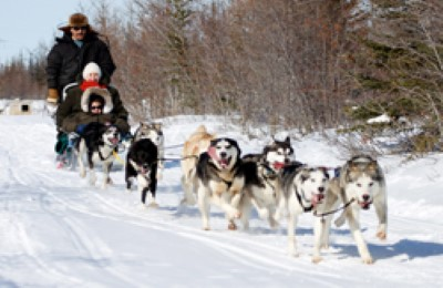 canada churchill dogsledding frontiers